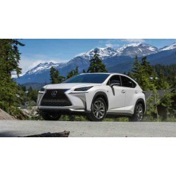 Lexus NX 2017-
